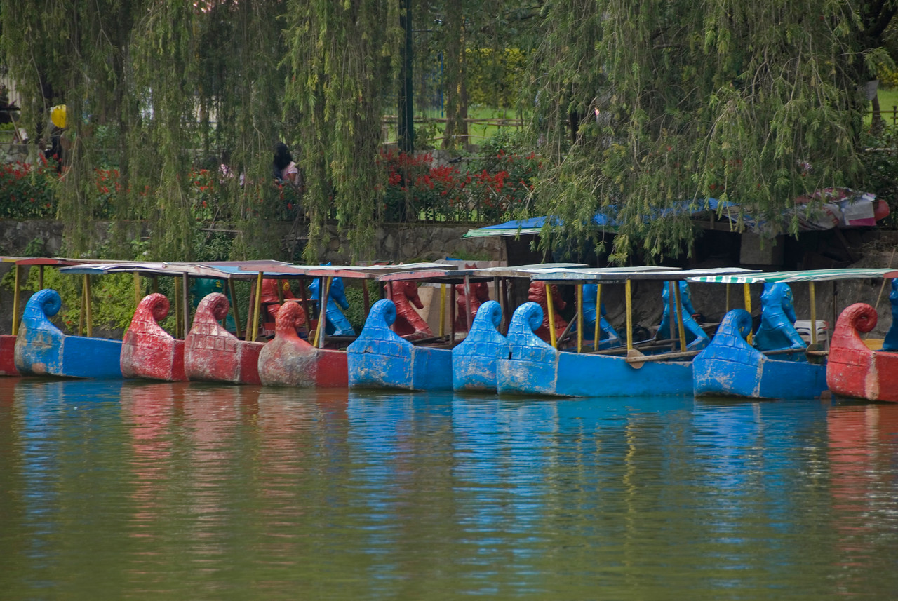 Colorful boats on a pond in Burnham Park - Baguio, Philippines