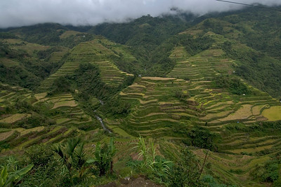 Landscape view of the Banaue Rice Terraces - Banaue, Philippines
