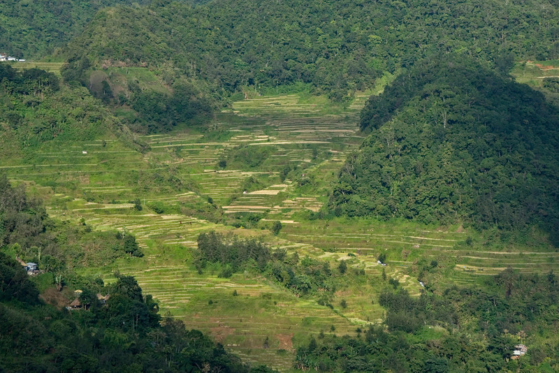 The view of the Banaue Rice Terraces from the Banaue Hotel - Banaue, Philippines