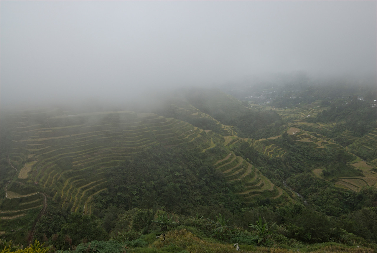 The Banaue Rice Terraces covered in thick fog - Banaue, Philippines