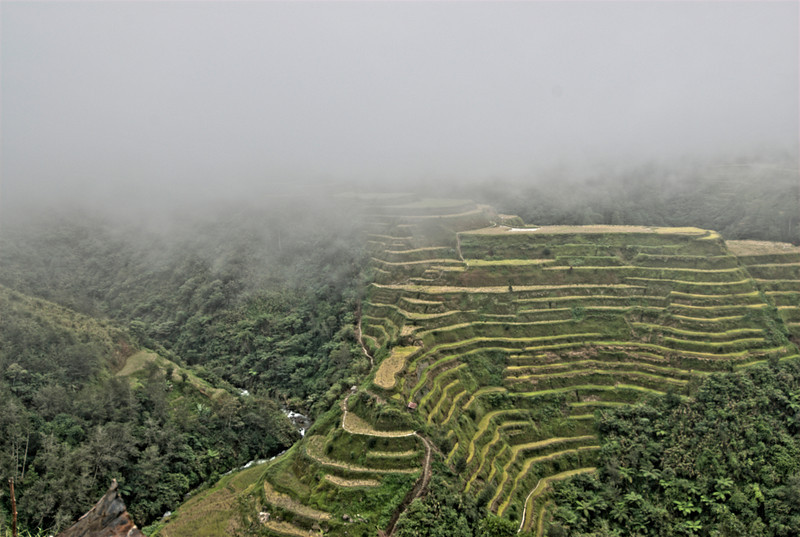 Foggy day at the Banaue Rice Terraces - Banaue, Philippines