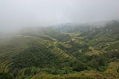 Fog covering the Banaue Rice Terraces - Banaue, Philippines