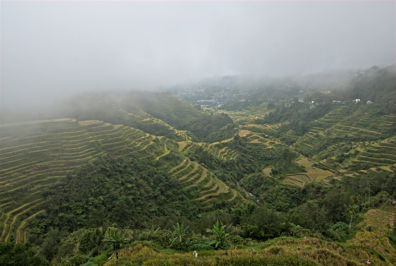 Fog covering the Banaue Rice Terraces - Banaue, Philippines