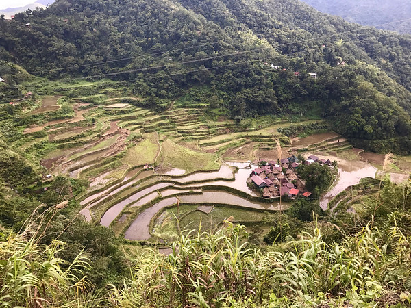 Rice terraces at Bangaan, Philippines