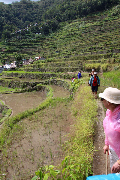 hiking on the rice terraces