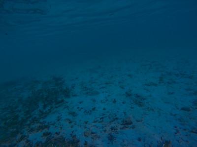 Dive in El Nido Series 1 Photograph 3