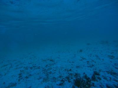 Dive in El Nido Series 1 Photograph 4