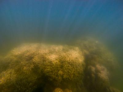 Dive in El Nido Series 3 Photograph 21