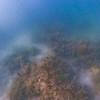 Dive in El Nido Series 3 Photograph 34