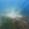 Dive in El Nido Series 3 Photograph 33