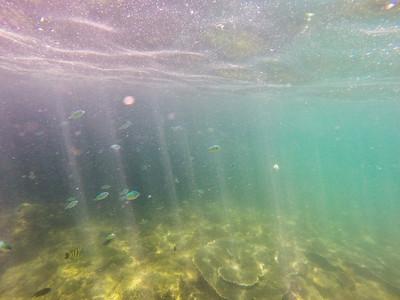 Dive in El Nido Series 3 Photograph 11