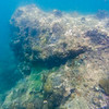 Dive in El Nido Series 4 Photograph 27