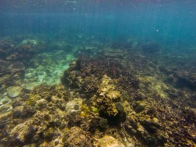 Dive in El Nido Series 4 Photograph 23