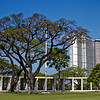 Manila American Cemetery Photograph 27