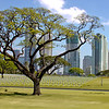Manila American Cemetery Photograph 34