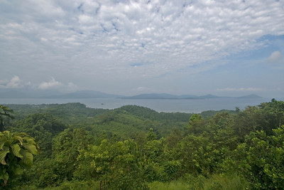 View of the rainforest and Ulugan Bay - Palawan, Philippines