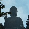 The largest outdoor sitting Buddha in Asia can be found at the peak of Lantau Island, next to Po Lin Monastery.  A must-see during any visit to Hong Kong.