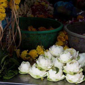 Little India - flowers