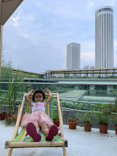 rooftop of national gallery singapore - singapore travel blog
