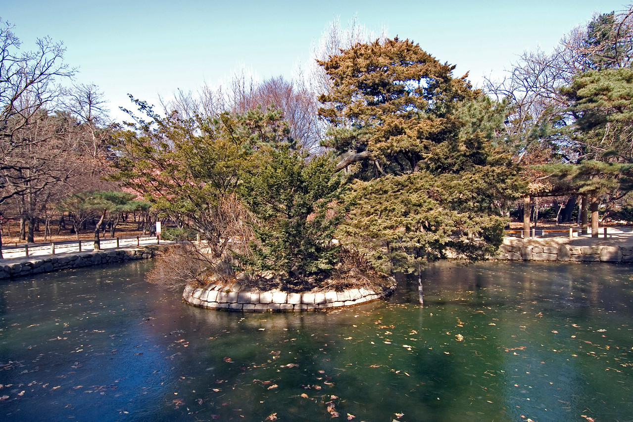 Frozen Pond at the Jongmyo Shrine - Seoul, South Korea