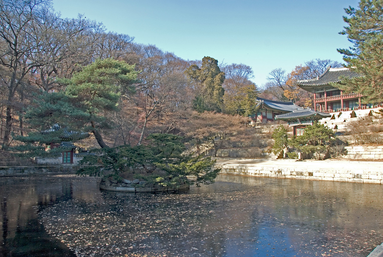 Frozen Pond in front of Changdeok Palace - Seoul, South Korea