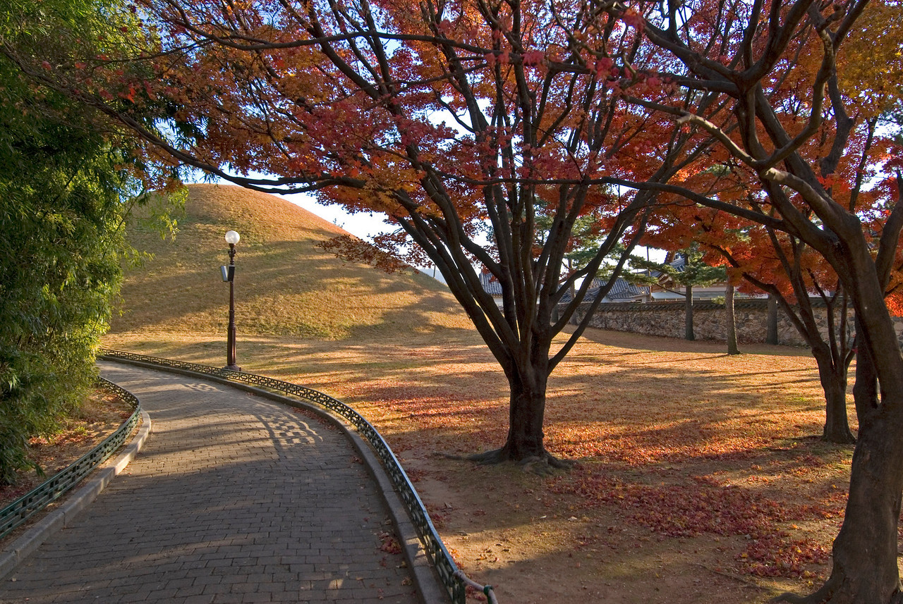 Burial mound amidst autumn trees in South Korea