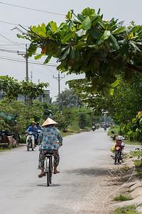 Mekong Delta - Tan Hoa