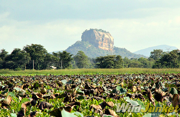 The Sigiriya Rock from a distance