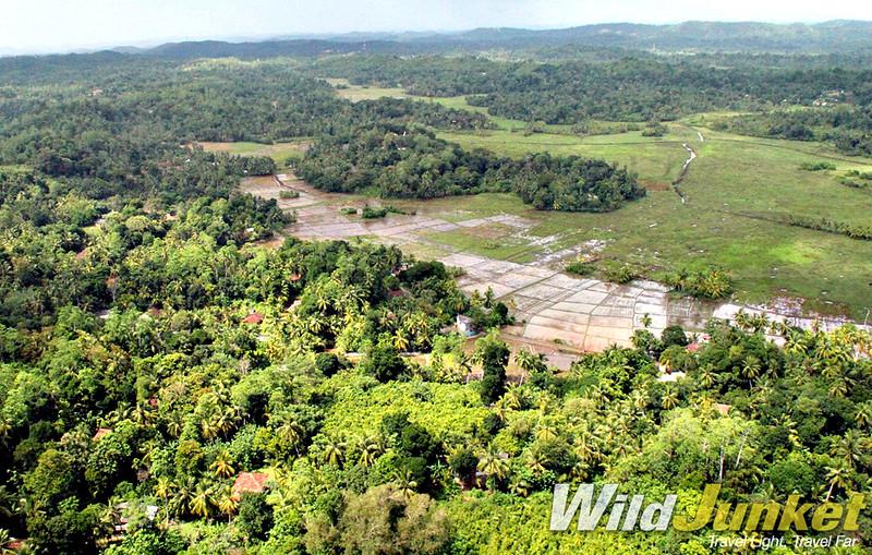 The lush greenery of Sri Lanka