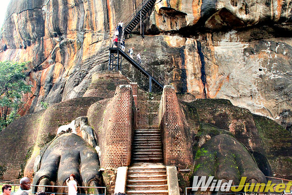 Climbing up the vertical walls of Sigiriya Rock