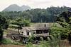The Hill Country, Sri Lanka.