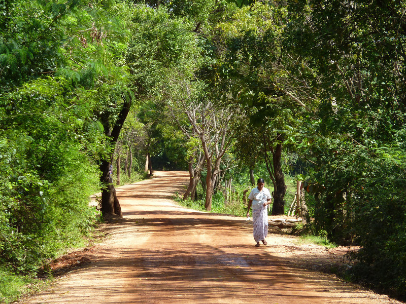 A villager walking down a quiet road near Kandalama, in central Sri Lanka.