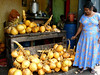 A woman selling coconuts by the roadside.  When you purchase one, she cuts a hole and sticks a straw in for you to drink through.