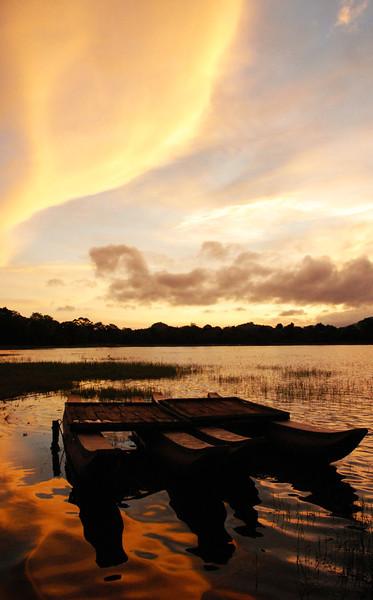 amya lake