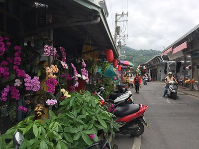 Yuli Township Taiwan East Coast Road Trip