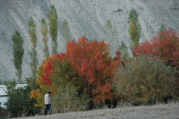 Autumn in Pamir Mountains - Khorog, Tajikistan