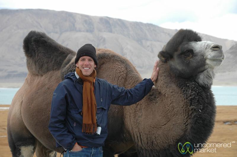 Dan with Bactrian Camel - Murghab, Tajikistan