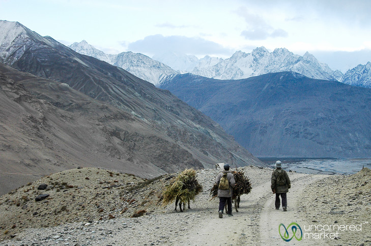 Donkeys Walking Home - Wakhan Valley, Tajikistan