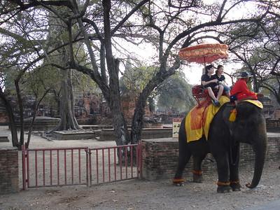 Wat Phra Ram Elephant, Ayuthaya - Thailand.