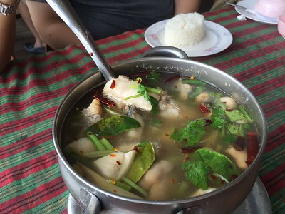 Tom Yum Pla Ma