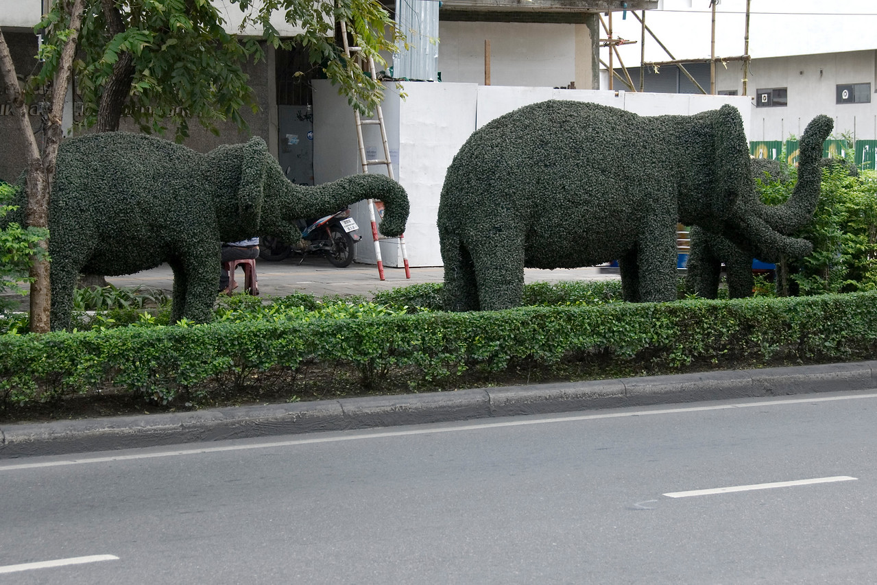 Elephant Shrubs in Bangkok, Thailand
