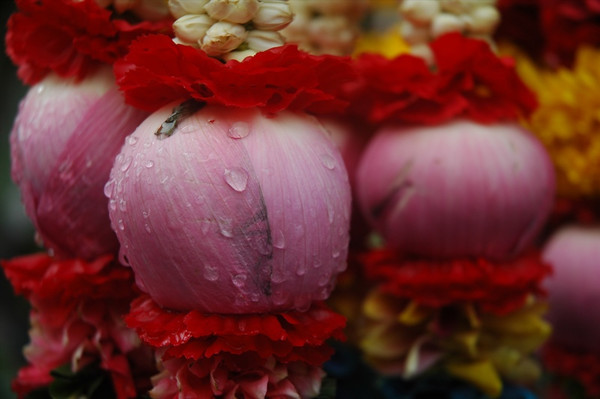 Flower Offerings - Bangkok, Thailand