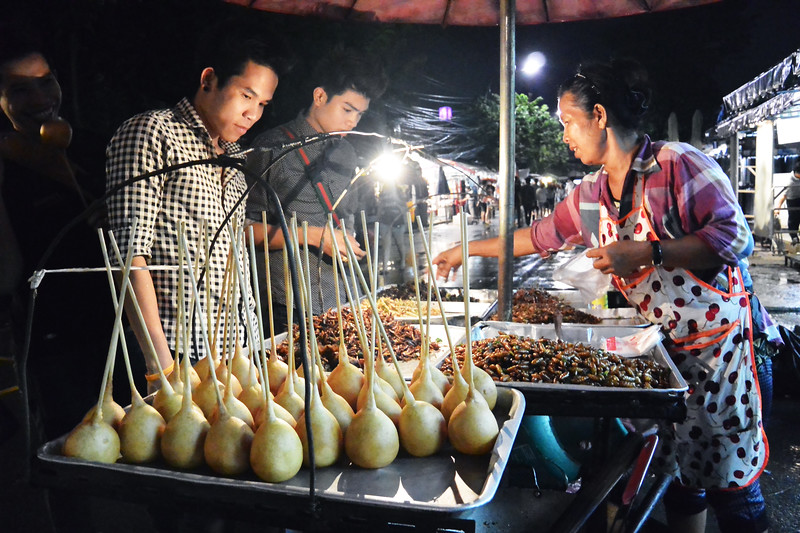 Bugs for sale at Chatuchak Market. October 2014