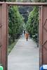Buddhist Monk Thailand
