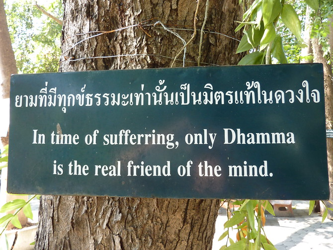 In time of suffering, only dhamma is real friend of the mind