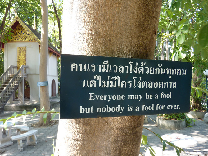 Everyone may be a fool but nobody is a fool forever