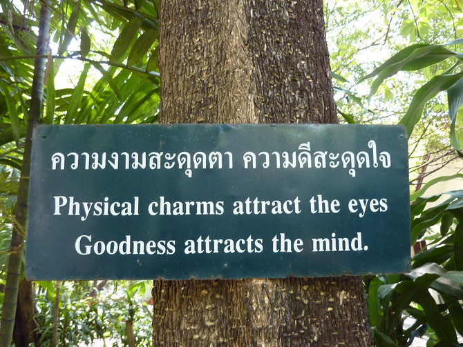 Physical charms attract the eyes, goodness attracts the mind