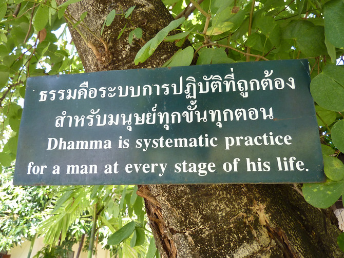 Dhamma is systematic practice for a man at every stage of his life