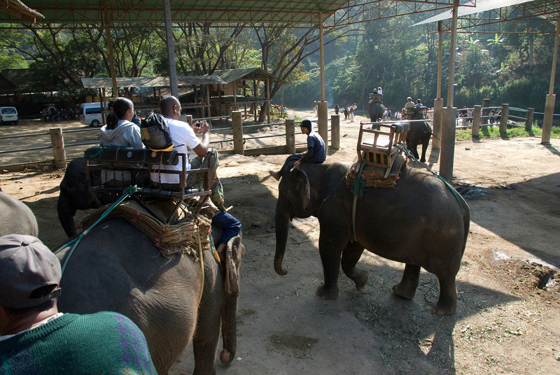 Boarding at the back of elephants - Chiang Mai, Thailand