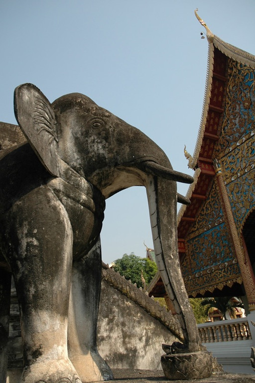 Elephant in the Temple - Chiang Mai, Thailand